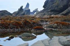 Przypływu basenu plaża Fotografia Royalty Free