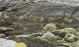 Przypływu basen Zdjęcia Royalty Free