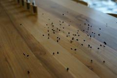 Przypadkowe fasole skacze stół zdjęcie royalty free