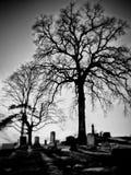 Przypadkowi obrazki wokoło od miasteczka Obraz Royalty Free