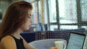 Przypadkowy pracujący dzień nowożytny architekt Piękna młoda kobieta używa laptop i trzymający filiżankę przy ona podczas gdy sie zdjęcie wideo