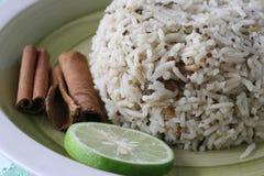 przyprawa ryżu Obrazy Royalty Free