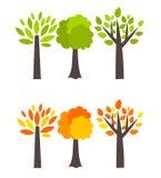 Przyprawia drzewa Obrazy Stock