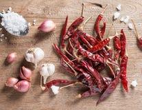 Przyprawowi składniki: pikantność mieszają, chili pieprz, czosnek, czerwony oni Fotografia Stock