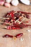 Przyprawowi składniki: pikantność mieszają, chili pieprz, czosnek, czerwony oni Zdjęcia Royalty Free