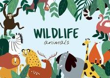 Przyrod zwierząt kreskówki stylu zwierząt szablonu wektor ilustracji