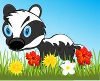 Przyroda borsuk na rok haliźnie z kwiatem Zdjęcie Royalty Free