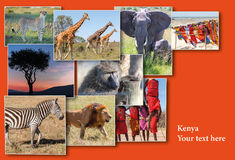 Przyroda i piękny zmierzch przy Kenja Obraz Stock