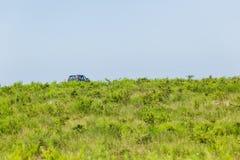 Przyroda safari turystów pojazd Zdjęcie Stock