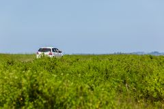 Przyroda safari turystów pojazd Obrazy Stock