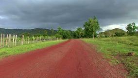 Przyroda w sawannie w Guyana zbiory wideo