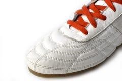 Przyrodni sporta but obrazy stock
