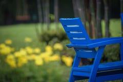 Przyrodniego błękita krzesło w ogródzie z plama żółtym kwiatem przy tłem obrazy royalty free