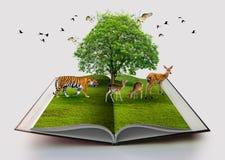 Przyrody konserwaci środowiska tygrysia Jelenia Ptasia książka odizolowywająca na biel otwartej książce w papierowej przetwarza 3 obraz stock