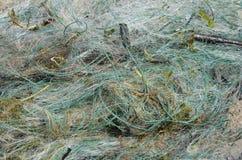 Przyrody ochrona, zaniechana sieć rybacka jest niebezpieczna dla ryby i innych zwierząt którą w dostawać może obrazy royalty free