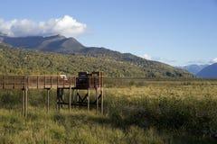 Przyrody Viewing Przy garncarki bagna zakotwienie Alaska Zdjęcia Stock