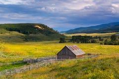 Przyschnięci gospodarstwa rolne fotografia stock