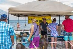 Przyschnięty Brzegowy Dennego żółwia festiwal zdjęcia royalty free