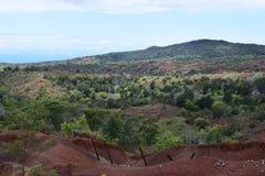 Przyschnięty ogrodzenie w Waimea jaru stanu parku w Kauai Hawaje Obraz Royalty Free