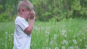 Przystojnej chłopiec dandelion podmuchowi ziarna w parku, zwolnione tempo zbiory wideo