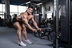 Przystojny bodybuilder szkolenie w gym mężczyzna dźwignięcia seksownych dumbbells Obrazy Stock