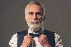 Przystojny elegancki dorośleć mężczyzna Fotografia Royalty Free