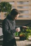 Przystojny hodowca ostrożnie iryguje rośliny salowe obraz stock