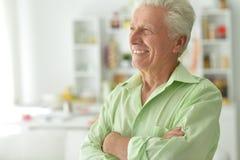 przystojny mężczyzna portreta senior Fotografia Stock