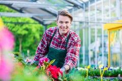 Przystojny młodego człowieka ono uśmiecha się szczęśliwy podczas gdy pracujący jako kwiaciarnia obraz stock