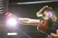 Przystojny młody silny sporta mężczyzna bokser robi ćwiczeniom zdjęcie royalty free