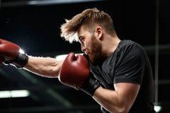 Przystojny młody silny sporta mężczyzna bokser robi ćwiczeniom zdjęcia royalty free