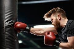 Przystojny młody silny sporta mężczyzna bokser robi ćwiczeniom zdjęcia stock