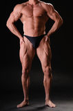 Przystojny mięśniowy bodybuilder Obraz Royalty Free