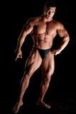 Mięśniowy bodybuilder obrazy royalty free