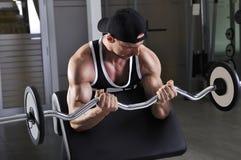 Przystojny potężny sportowy mężczyzna robi bicepsom ćwiczy z barbell Zdjęcie Stock