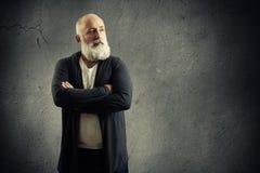Przystojny starszy mężczyzna z siwowłosą brodą Zdjęcie Stock