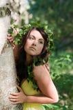 przytulenia boginki drzewo Obrazy Royalty Free