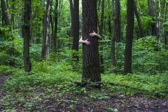 przytulenia drzewo Zakończenie ręki ściska drzewa a Zdjęcia Royalty Free
