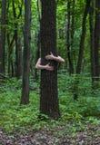 przytulenia drzewo Zakończenie ręki ściska drzewa a Zdjęcie Stock