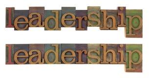 przywódctwo Fotografia Stock