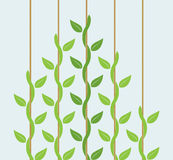 Przywódctwo lub turniejowy pojęcie z pięcie roślinami ilustracja wektor
