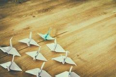 Przywódctwo pojęcie z papierowymi ptakami na drewnianym tle Jeden lider prowadzi inny Filtrujący i tonujący wizerunek Zdjęcia Royalty Free