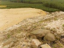 Przywrócenie część minujący piaska łup, zasadza młodego sosnowego las obrazy stock