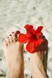 Pés da mulher com lustrador e flor de prego Fotos de Stock Royalty Free