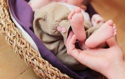 Pés do bebê Fotografia de Stock Royalty Free