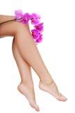 Pés fêmeas bonitos e uma flor da orquídea Imagem de Stock