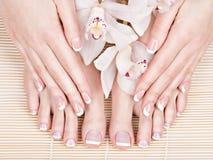 Pés fêmeas no salão de beleza dos termas no procedimento do pedicure e do tratamento de mãos Fotografia de Stock