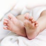 Pés recém-nascidos do bebê Imagens de Stock