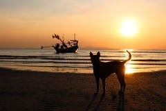 Psa i długiego ogonu łódź z zmierzchem Fotografia Stock