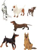 psa zwierzę domowe Obraz Royalty Free